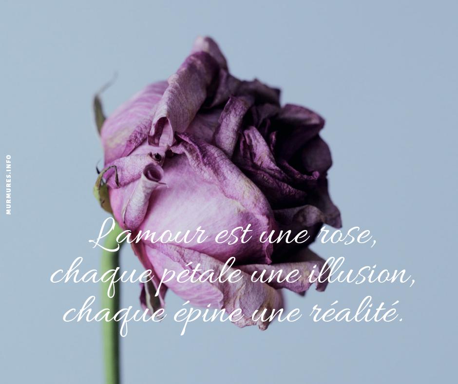Citation Amour Triste Murmures Info