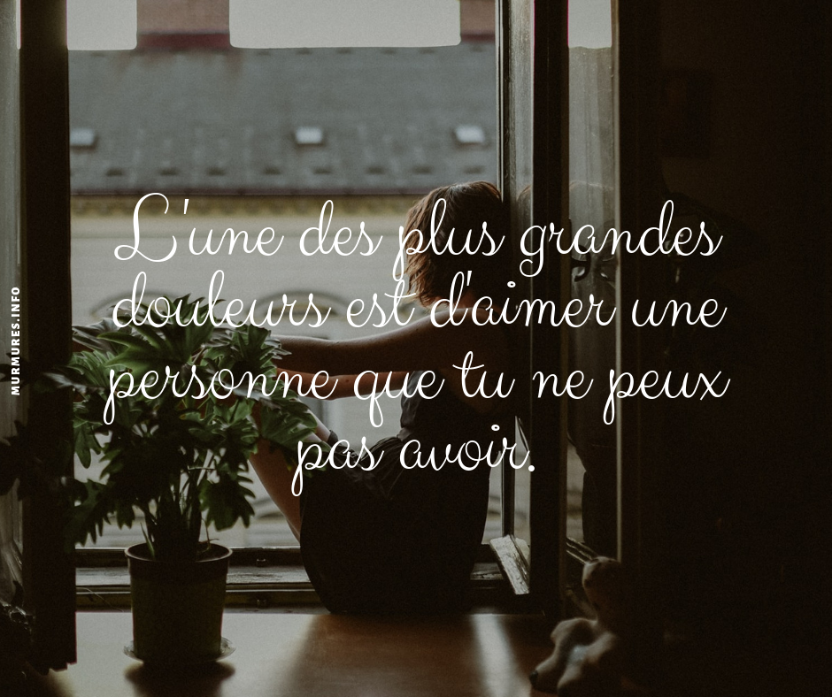 citation amour triste