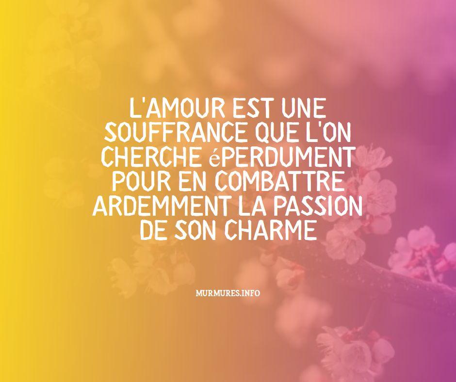 Citation amour passion